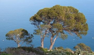 Mittelmeer-Blick in Calpe an der Costa Blanca