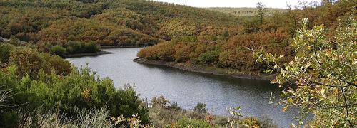Hayedo de la Pedrosa Flussarm Provinz Segovia