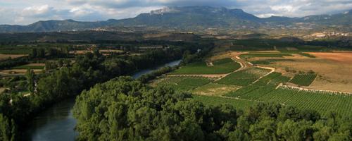 La Rioja am Ebro