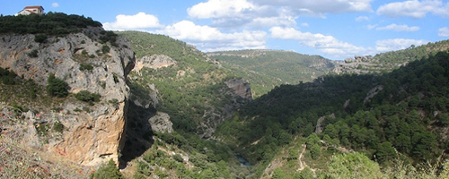 Tal Bergregion Wald
