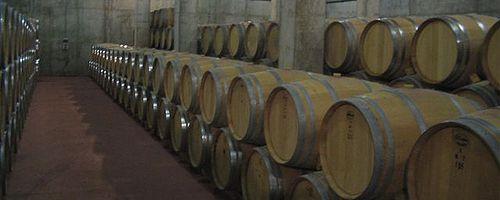 Weintourismus in der Provinz Valladolid