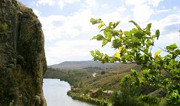 Blick auf den Fluss Duero im Naturpark Cañón del Río Lobos